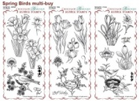 Spring Birds Rubber Stamps Multi-buy - DL