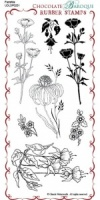 Fuchsia Rubber Stamp Sheet - DL