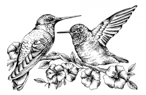 Crafty Individuals - Hummingbirds amongst Blossoms