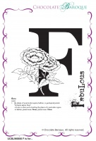 F is for... Rubber Stamp sheet - Chocolate Block